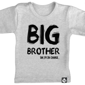 baby tshirt korte mouw grijs big brother